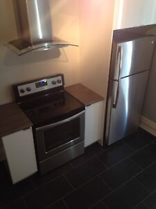 Downtown Core Three Bedroom Apartment
