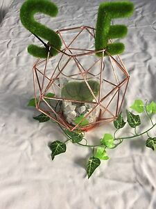 Rose gold centrepiece to hire $5 Liverpool Liverpool Area Preview