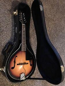 Alabama mandolin with pickup and pickup