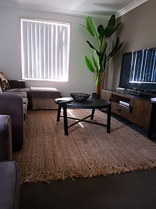 Large sisal jute rug St Marys Penrith Area Preview