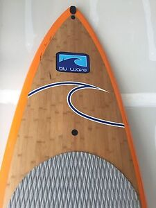 CHEAP BRAND NEW PADDLE BOARD (8FT)