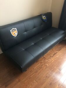 Brand new couch (turns into bed)