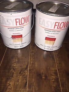 2 Gallons of Paint for sale