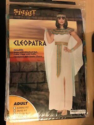 Spirit Halloween Cleopatra Adult Costume New in Package 5 Sizes Avail](Halloween Costume Package)