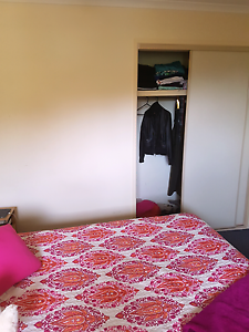 1 room available in House share Sippy Downs Maroochydore Area Preview