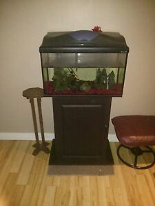 15 gallon aquarium
