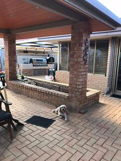 Outdoor Pavers Free