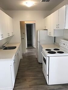 Spacious 1 BDRM in Central Location- Pet Friendly!