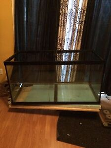 120 gallon Priced to sell