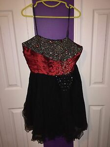 BRAND NEW DRESS FROM AGENT 99