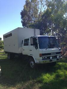 Dual cab 5 Horse Truck Oakbank Adelaide Hills Preview