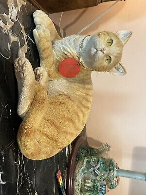 Country artists Cat lying Ginger tabby