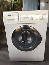 Bosch Maxx 7kg Labrador Gold Coast City Preview