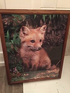 Framed Fox Print