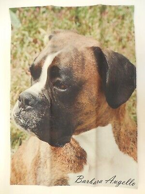 Brown Boxer Unclipped Ears Dog Breed, Side view, decorative GARDEN Flag ~12
