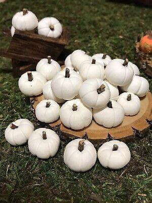 8 Small Miniature Fairy Garden, Doll House Pumpkins. Polymer Clay (Small Pumpkins)