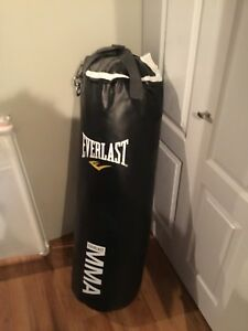 Everlast MMA punching bag