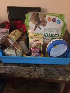 Living World Hamster Cage and Accessories