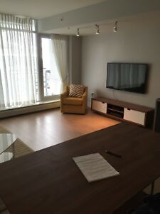 Furnished 1 bedroom condo for rent