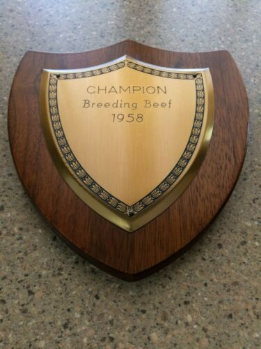 Rare Vintage 1958 Champion Breeding Beef Trophy Wall Plaque Hereford Bull Cow