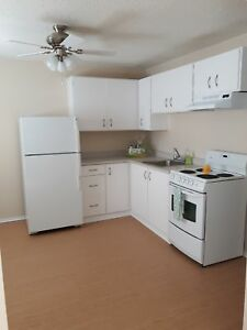 Large Bachelor apartment in Millidegville! $685 All in!