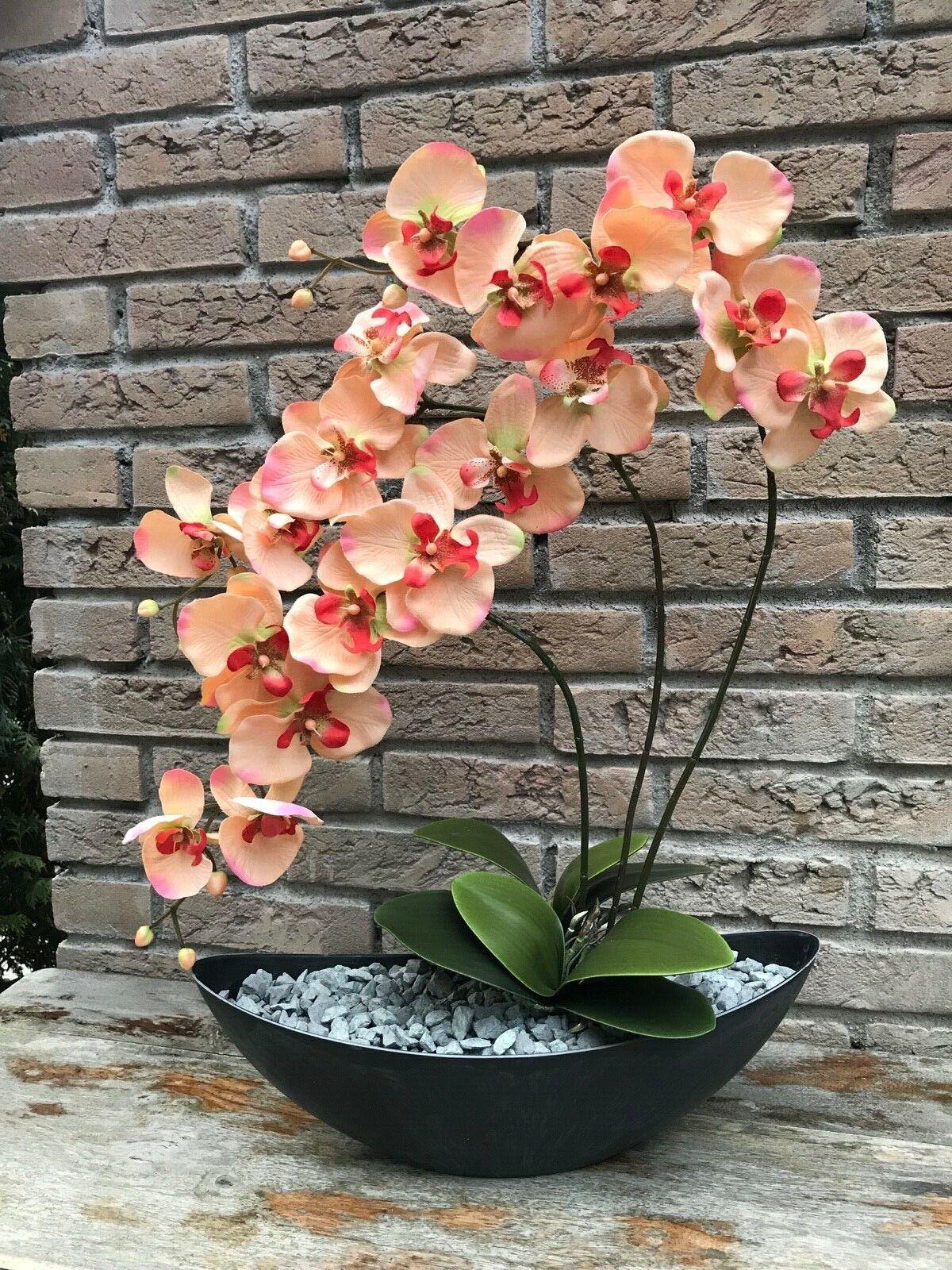 Neu edle Orchidee in Pfirsich/Anthrazit Orchideen Kunstblumen Gesamthöhe 58 cm