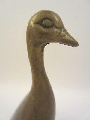 Möwe Ornament (MESSING FIGUR SKULPTUR VOGEL MÖWE GANS ENTE KÜHLERFIGUR HOOD ORNAMENT BIRD ALT )