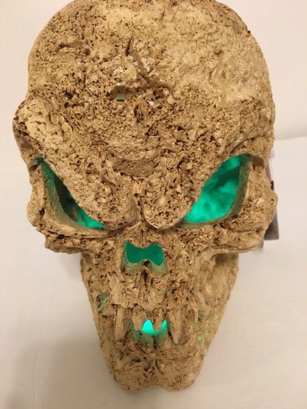 Lighted Skull Home Decor NEW