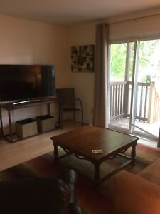 Fully Furnished Large, One Bedroom Apt
