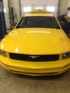 Ford Mustang v6 (or your best offer)