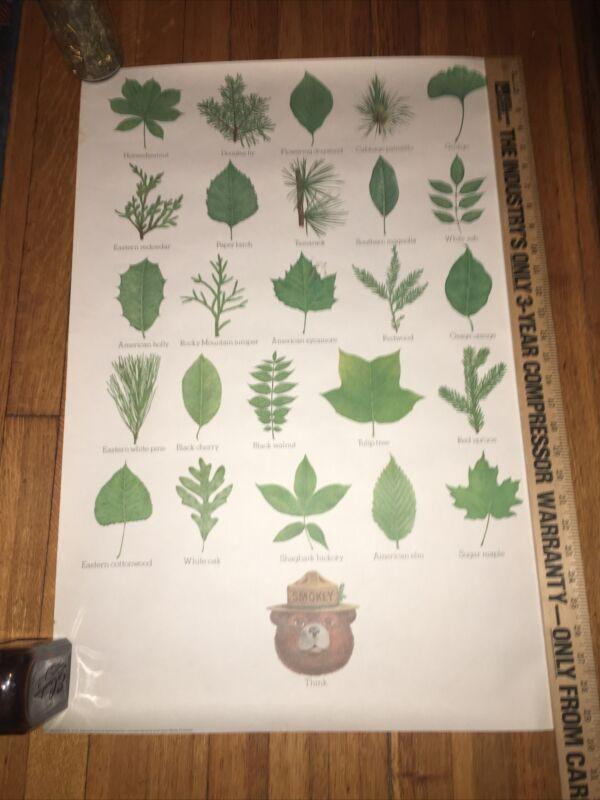 "Vintage 1985 Smokey Bear leaves educational poster 20x30 ""Think"""