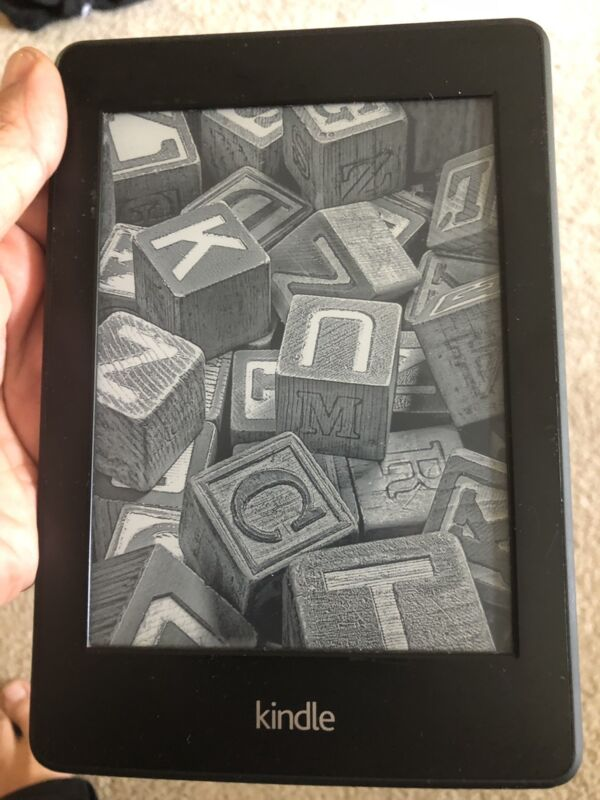 Amazon Kindle Paperwhite 2nd Wi-Fi 6th Generation Awesome Condition