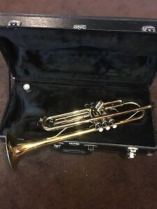 Trumpet professional  with case only $350.00