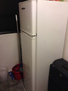 Fridge Fisher and Paykel 250L Surry Hills Inner Sydney Preview