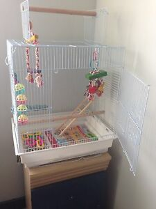 ❗️NEW BIRD CAGE WITH TOYS ❗️