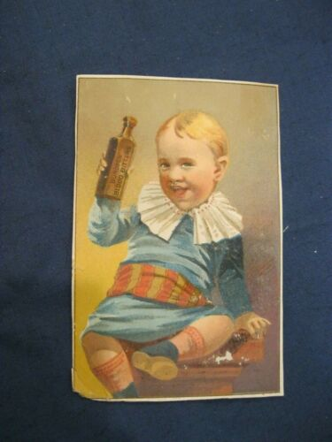Victorian Trade Card H.S. Sherwood Poughkeepsie NY Burdock Blood Bitters  4A