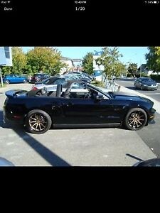 Looking for rims for my 2006 Mustang GT