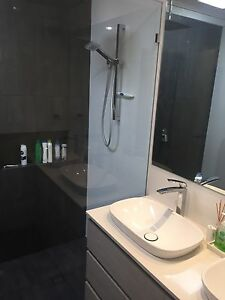 House mate who loves dogs Scarborough Stirling Area Preview