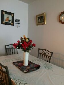 1 Bedroom 3 1/2 Apartment is ready to rent from 1st of July