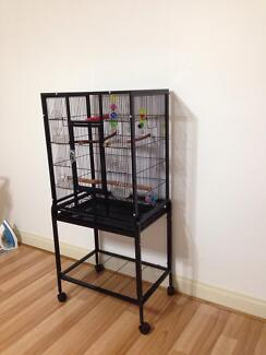 Extra large bird aviary excellent condition Taylors Hill Melton Area Preview
