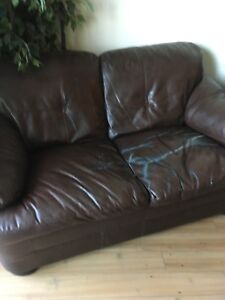 Sofa and love seat to give