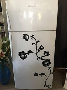 One Of A Kind !! 517 Litre FISHER PAYKEL FRIDGE FREEZER $270 Tenambit Maitland Area Preview
