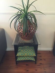 Vintage retro cane side table Revamped Palm Beach Gold Coast South Preview