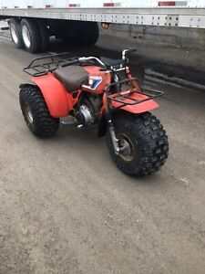 Looking for Honda atc