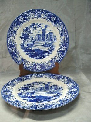 Royal Stafford MONARCH OFTHE CASTLE Blue Set of 2-11