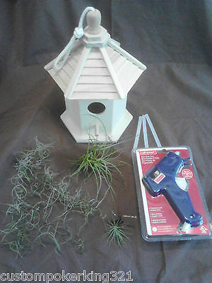 Living Wooden Bird House, Do It Yourself Kit, 3 Tillandsia Air Plants & Glue Gun