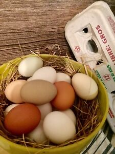 Farm fresh eggs $3.00 , 15 minuets north of valleyview AB.