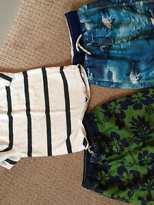 Size 4/5t trunks and gap shirt