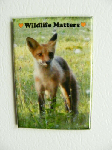 Wildlife Matters Fox Baby Refrigerator Or Locker Magnet Support Wildlife Rehab