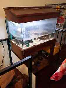 Fish Tank and Stand Carlisle Victoria Park Area Preview